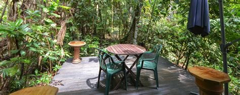 crater lakes rainforest cottages luxurious and