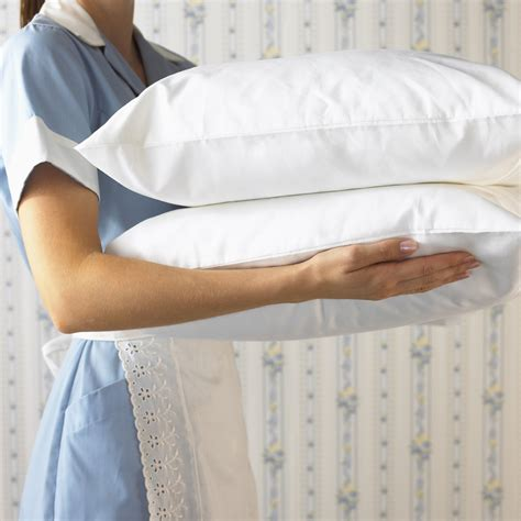 Carrying A Pillow by Side View Of Carrying Pillows New Links