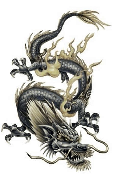 korean dragon tattoo designs asian tattoos