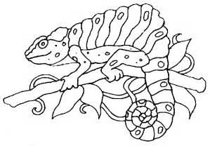 chameleon coloring page chameleon coloring pages to printable