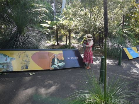 Friends Of The Botanic Gardens Sydney Roaming Roy Finds History Blooming In A Garden The Sydney Botanic Gardens Part 2 The Tingle