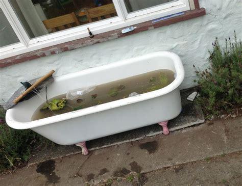 bathtub fish pond fish pond claw foot bath tub love my up cycling pinterest