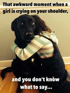 Crying Dog Meme - 1000 images about black lab on pinterest black labs