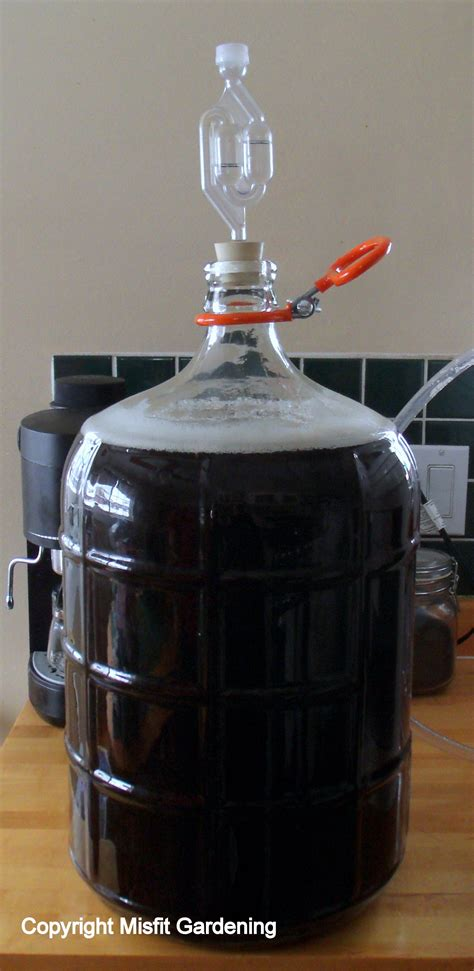 When To Rack To Secondary Fermenter by How To Brew Secondary Fermentation Episode 3 Misfit