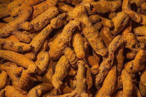 Yellowish Brown photo 1190 08 yellow sulphuric roots turmeric yellowish