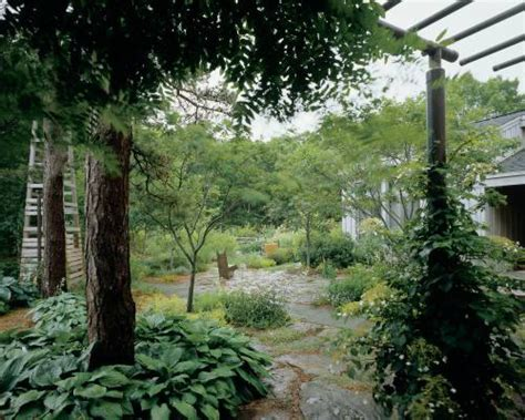 garden design ideas inspired by ancient japanese tea