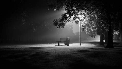 black and white bench le bench in black and white by kaldend on deviantart