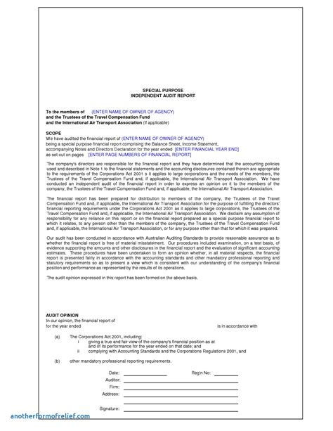 Report Template For Musculoskeletal System Format For Audit Report Employee Relations Officer Sle