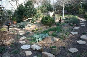Rock Gardening Rock Garden Journal Entry 4 Gardening With Confidence Plants With Benefits Berry Bad