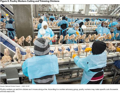 worker safety  meat  poultry plants watchblog official blog    government