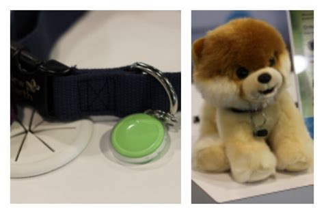 6 pet tech products being showcased at ces 6 favorite pet tech picks from ces 2017