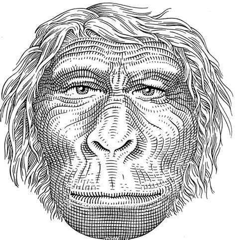 ape mind mind new mind emotional fossils and the evolution of the human spirit books evolution why we became human mind new mind emotional