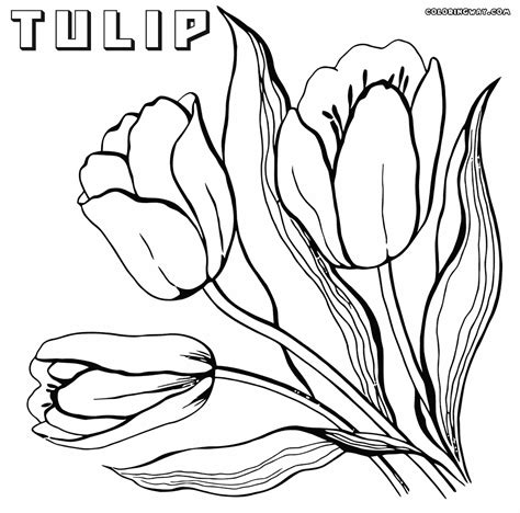 coloring in pages printable tulip coloring pages coloring pages to download and print