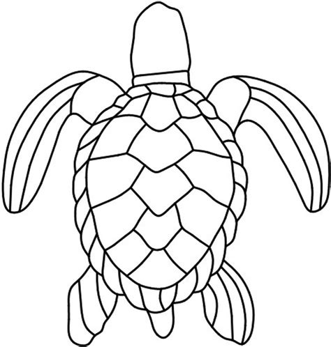 turtle pattern jpg sea turtle shell pattern