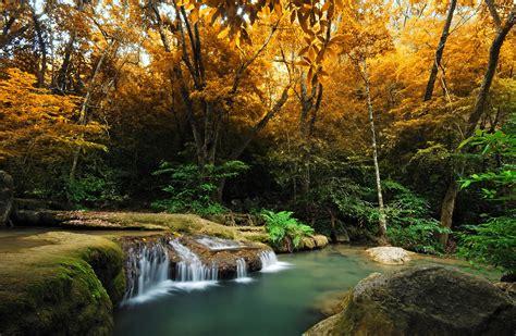 imagenes de bosques otoñales fondos de pantalla estaciones del a 241 o oto 241 o bosques r 237 os