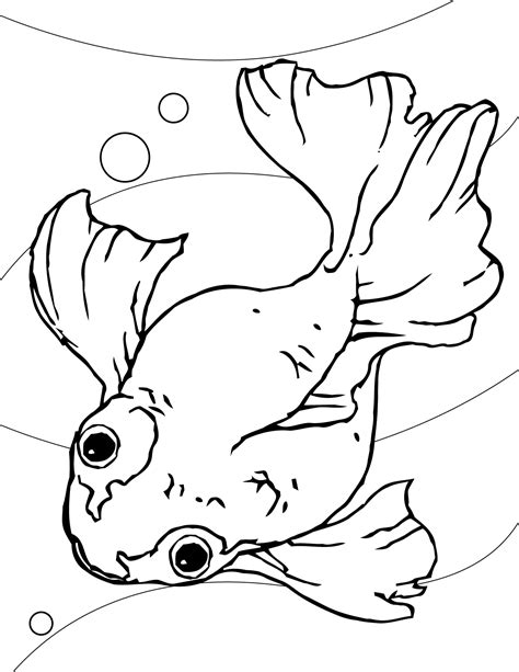 Free Printable Goldfish Coloring Pages For Kids Goldfish Coloring Pages