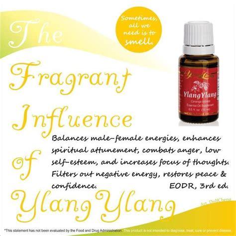 Minyak Ylang Ylang living ylang ylang essential 15ml