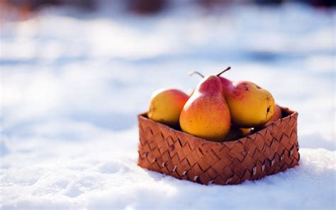 snowball oranges one mallorcan winter books pears fruit basket winter snow wallpaper 1680x1050 24809
