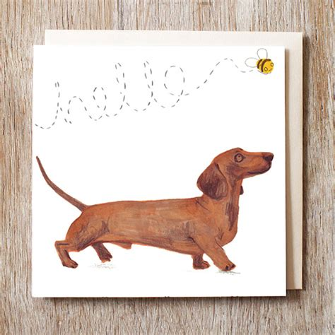 dogs cards card dachshund sausage card by jo clark design notonthehighstreet