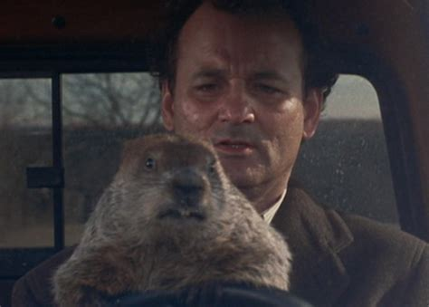 groundhog day rise and shine o k cers rise and shine channels groundhog