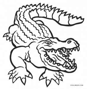 alligator coloring pages free printable alligator coloring pages for cool2bkids