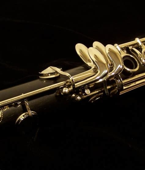 buffet greenline clarinet r13 clarinet by buffet cron kesslermusic