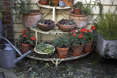 8 Tips For Fall And Winter Container Gardening | 8 tips for fall and winter container gardening