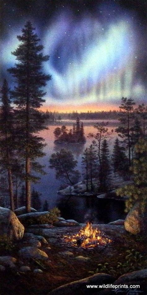 the hidden light of northern fires kim norlien night fire northern lights cfires and bright