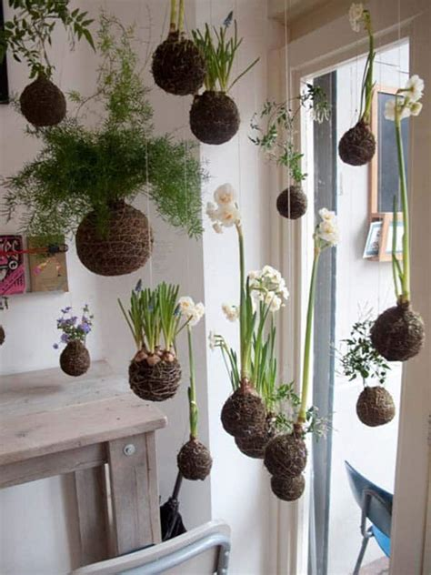 beautiful ideas  indoor mini garden
