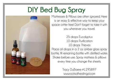 diy bed bug spray  essential oils oils essential oil spray bed bugs essential oils