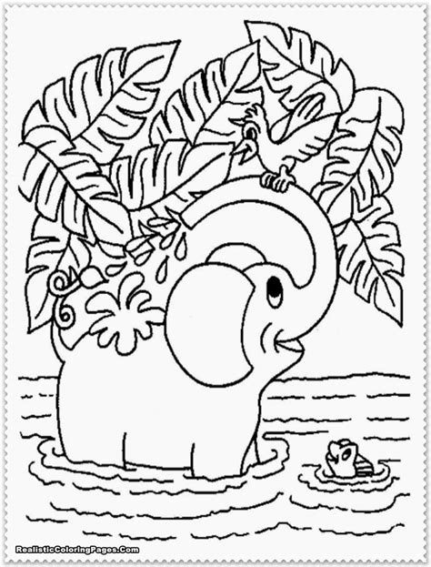 printable coloring pages jungle realistic jungle animal coloring pages realistic