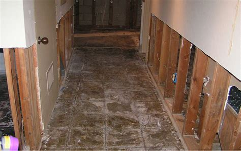 Water Repair An Introduction To Prudent Tactics Of Water Damage