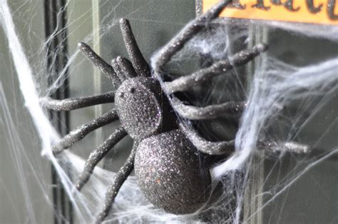 why are spider webs a popular decoration in poland a spooky spiderweb door using magnets suburble