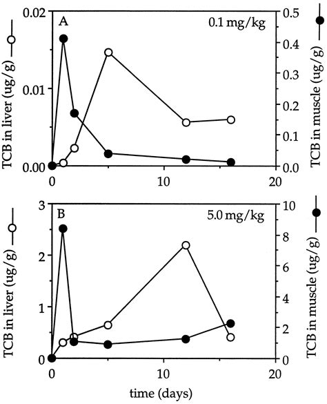 tcb study section metabolism of the aryl hydrocarbon receptor agonist 3 3 4