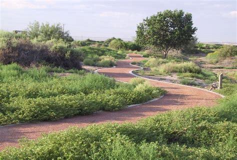 el paso botanical gardens botanical gardens things to do destination el paso