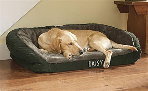deep dish dog bed deep dish dog bed for senior dogs webnuggetz com