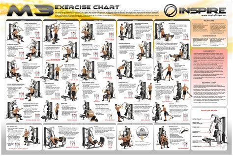 home gym workout plan weider home gym exercise chart diet health pinterest