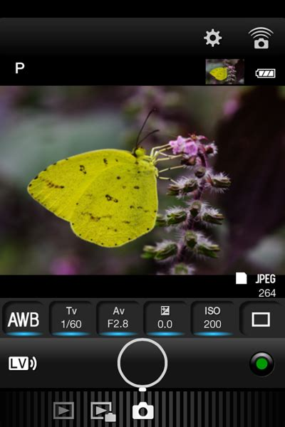 image sync image sync mobile app now available for android