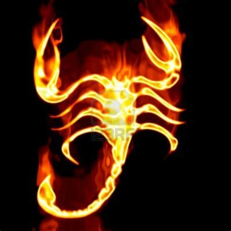 Wing Scorpio Pin Cor Scorpio scorpion by firemanxtm on deviantart