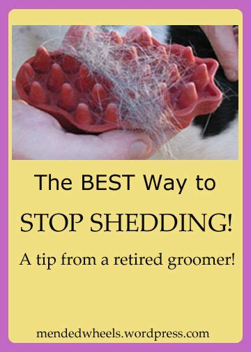 Ways To Stop Shedding Hair by 10 Best Images About Stuff On Crafting