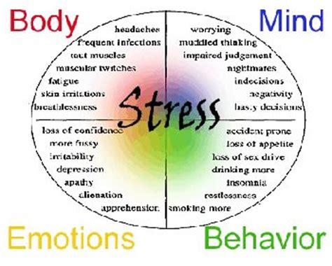 stress the psychology of managing pressure books what is stress management definition benefits