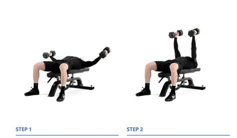 flat bench dumbell flat dumbbell fly www pixshark com images galleries