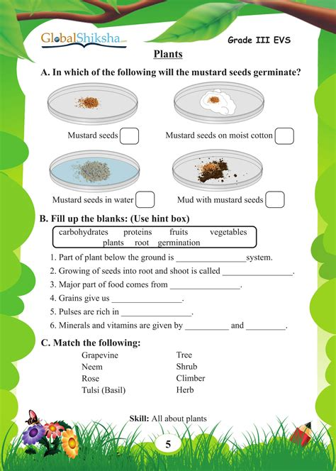 buy worksheets for class 3 environmental science evs