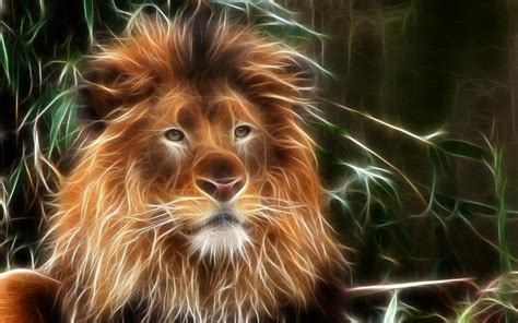 wallpaper abstract lion lion wallpaper abstract wallpaper wallpaper hd