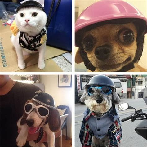 dogs with abs handsome biker hat pets helmets ridding cap abs doggie puppy motorcycle protect for