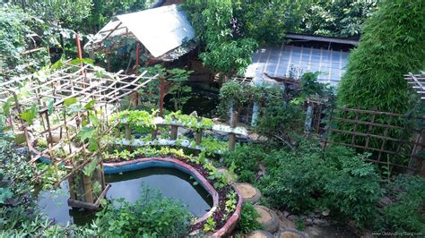 Backyard Organic Farming by Jaya Secret Garden A Diversified Organic Backyard Farm