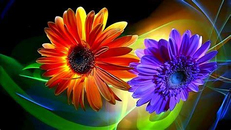 wallpaper 3d flower desktop top 51 3d flower wallpaper