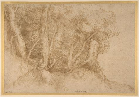 titian tiziano vecellio group  trees  met