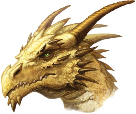 dragon s dragons