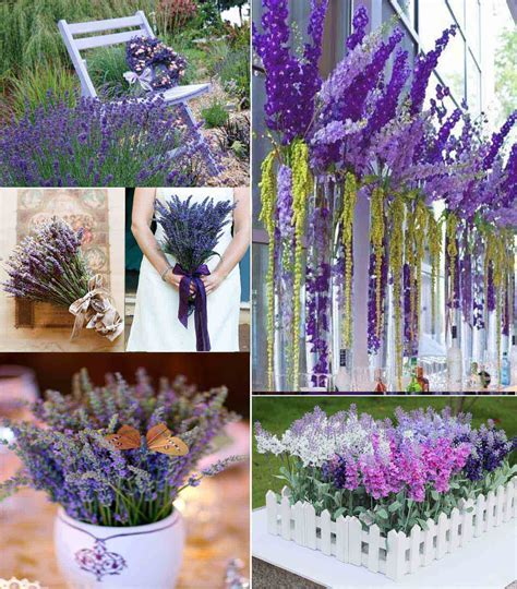 Ideas of Summer Wedding Romantic Lavender Themed Wedding
